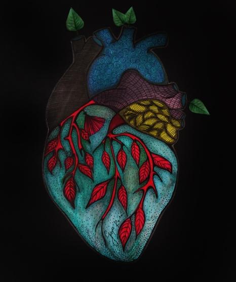 serca2-kopia